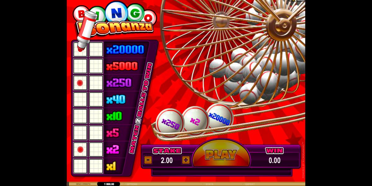 bingo bonanza microgaming