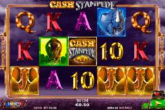 cash stampede netgen gaming