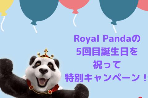 royal panda  anniversary