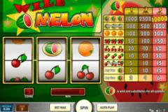 wild melon playn go