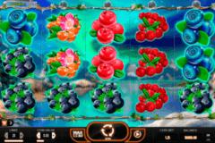 winterberries yggdrasil
